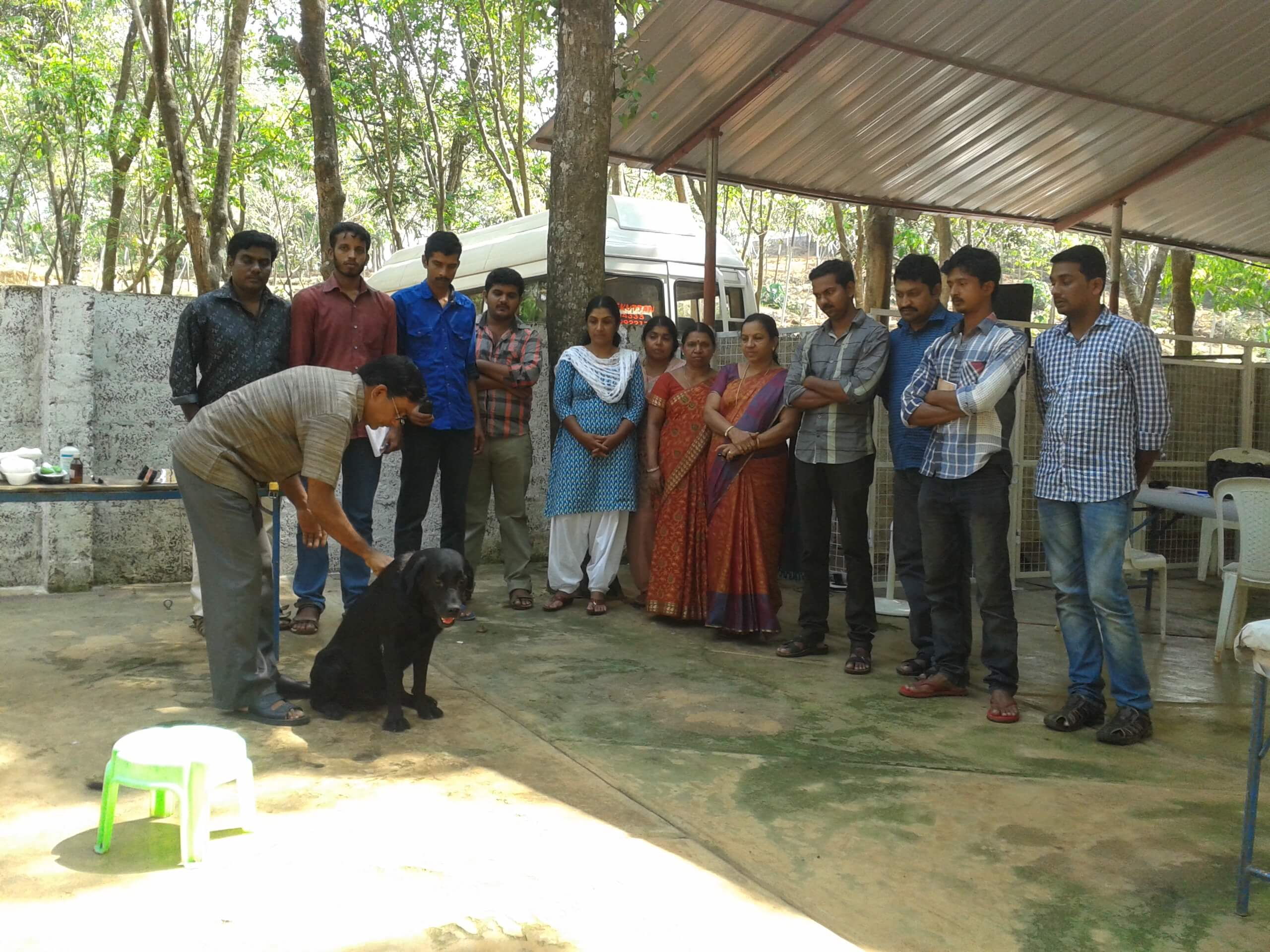 Cochin Dog Training Academy Cochin Kerala