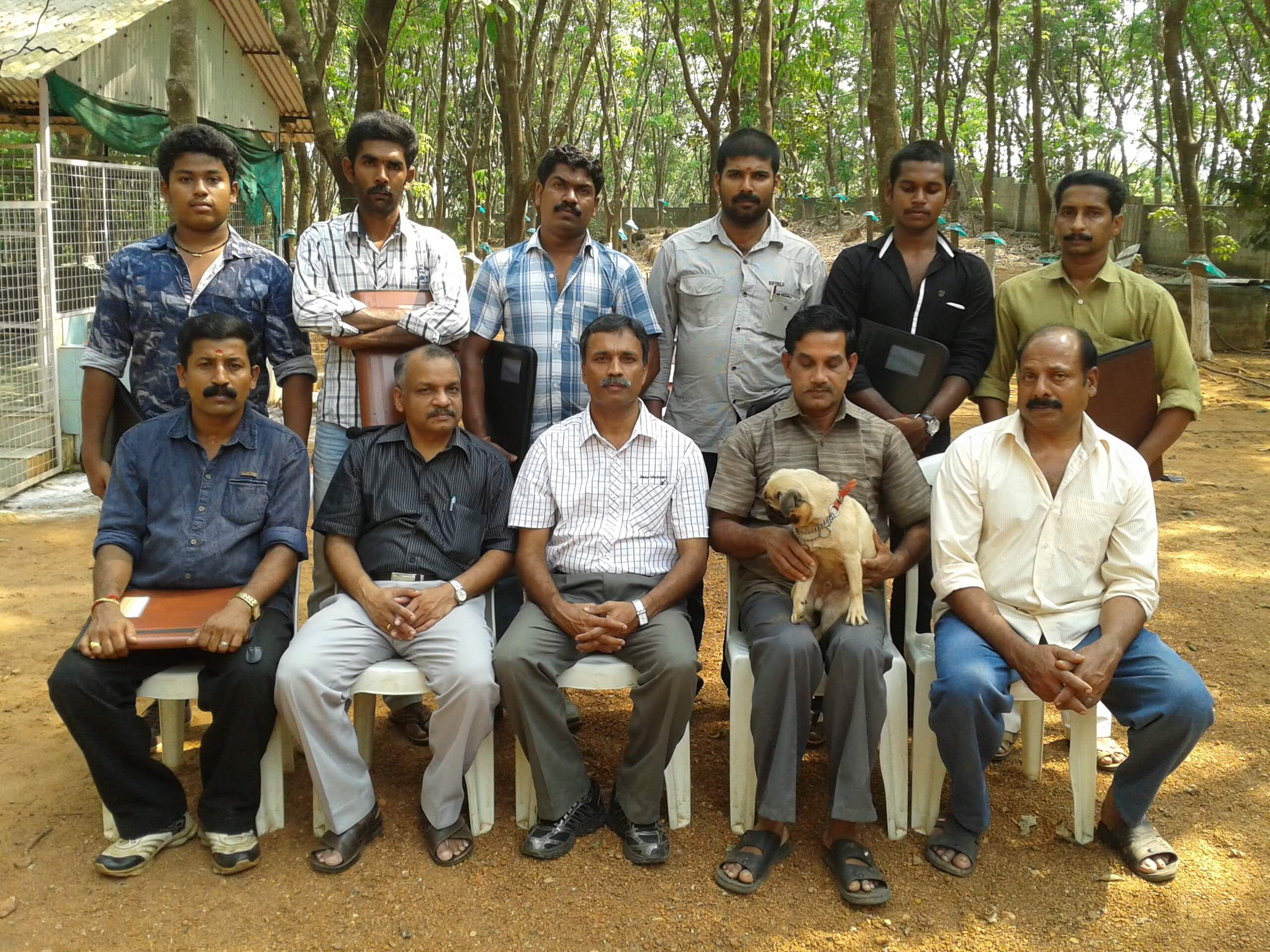 Dog Trainer Courses   Professional Pet Training Classes In